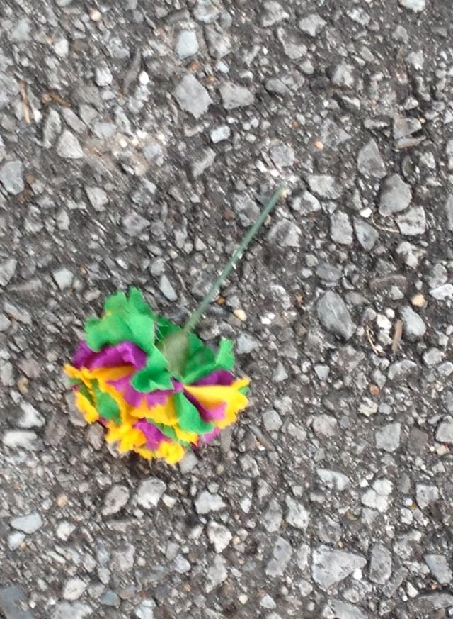 0123mgflower